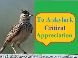to a skylark critical appreciation