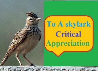 to a skylark critical appreciation