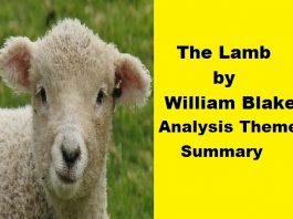 the lamb william blake theme